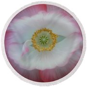 Red Eye Poppy Round Beach Towel by Barbara St Jean