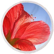 Red Flower In The Sun By Jan Marvin Studios Round Beach Towel