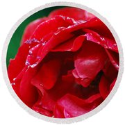 Red Flower Wet Round Beach Towel by Matt Harang
