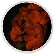 Round Beach Towel featuring the photograph Red Flowers In Evening Light by Lucinda Walter