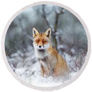 Red Fox Blue World Round Beach Towel by Roeselien Raimond
