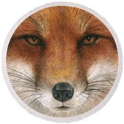 Red Fox Gaze Round Beach Towel