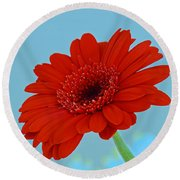 Red Gerbera Daisy Round Beach Towel
