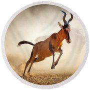 Red Hartebeest Running In Dust Round Beach Towel