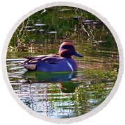 Red Headed Duck Round Beach Towel by Susan Garren