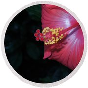 Round Beach Towel featuring the photograph Red Hibiscus by Ron Davidson