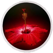 Red Hibiscus Tropical Flower Wall Art Round Beach Towel