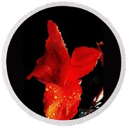 Round Beach Towel featuring the photograph Red Hot Canna Lilly by Michael Hoard