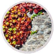 Round Beach Towel featuring the photograph Red Ivy On Wall by Silvia Ganora