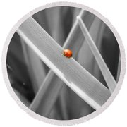 Red Ladybird Round Beach Towel