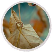 Red Leaf Close-up Round Beach Towel