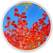 Round Beach Towel featuring the photograph Red Leaves by David Lawson
