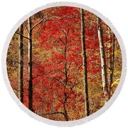 Red Leaves Round Beach Towel by Patrick Shupert