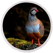 Red-legged Partridge Round Beach Towel
