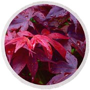 Round Beach Towel featuring the photograph Red Maple After Rain by Ann Horn