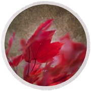 Red Maple Dreams Round Beach Towel