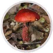 Red Mushroom Round Beach Towel