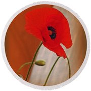 Red Poppy And Buds Round Beach Towel