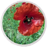 Round Beach Towel featuring the photograph Red Poppy by Vesna Martinjak