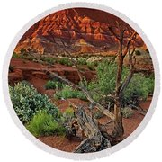 Round Beach Towel featuring the photograph Red Rock Butte And Juniper Snag Paria Canyon Utah by Dave Welling