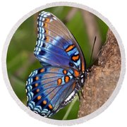 Red Spotted Purple Butterfly Round Beach Towel by Sandy Keeton
