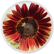 Red Sunflower And Bee Round Beach Towel by Kerri Mortenson