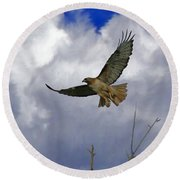 Red Tail Hawk Digital Freehand Painting 1 Round Beach Towel