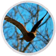 Round Beach Towel featuring the photograph Red Tail Hawk In Flight by Peggy Franz
