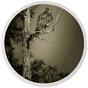 Red Tail Hawk On Loop Road Round Beach Towel