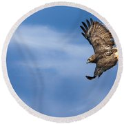 Red Tailed Hawk Soaring Round Beach Towel