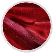 Red Ti The Queen Of Tropical Foliage Round Beach Towel