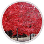 Red Tree Line Round Beach Towel
