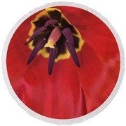 Red Tulip Detail Round Beach Towel