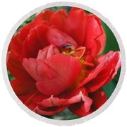 Round Beach Towel featuring the photograph Red Tulip by Vesna Martinjak