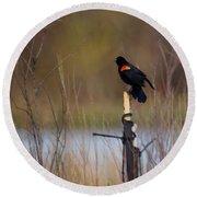 Red Winged Blackbird 2 Round Beach Towel