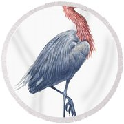 Reddish Egret Round Beach Towel by Anonymous
