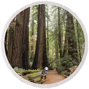 Redwood Trees Round Beach Towel