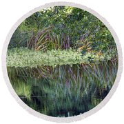 Round Beach Towel featuring the photograph Reed Reflections by Kate Brown
