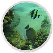 Reef Life Round Beach Towel
