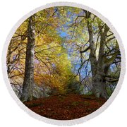 Reelig Forest  Round Beach Towel