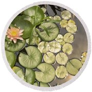 Reflected Light Upon Flowering Water Lilies Round Beach Towel