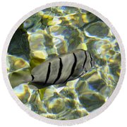 Reflection Fish Round Beach Towel