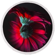 Reflection Of The Gerbera Round Beach Towel