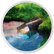 Round Beach Towel featuring the photograph Reflections by Gunter Nezhoda