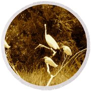 Resting Flock Sepia Round Beach Towel by Anita Lewis