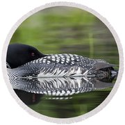 Resting Loon Round Beach Towel