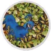 Resting Peacock Round Beach Towel
