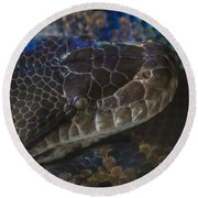 Reticulated Python With Rainbow Scales Round Beach Towel