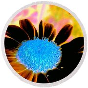 Retro Daisy Round Beach Towel