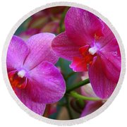 Round Beach Towel featuring the photograph Rhapsody In Purple - Orchids by Dora Sofia Caputo Photographic Art and Design
